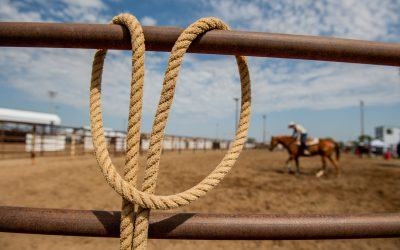 Oelrichs Barrel Racing Champion's Passion for Horses Pays Off